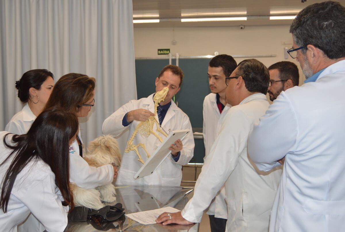 Explicando técnica de palpação cervical